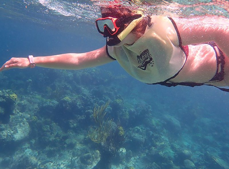 Student snorkelling on coral reef on Bahamas animal science camp