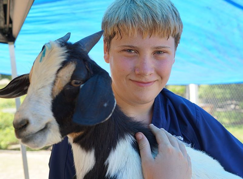 Student with goat on animal science camp Broadreach