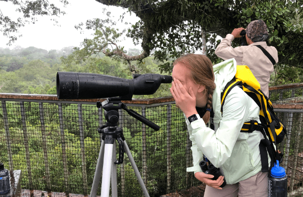 College-aged student looking through telescope in canopy of rain forest.